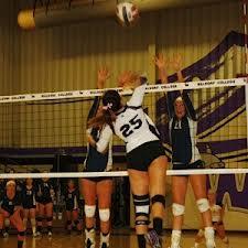 Waldorf Volleyball 1