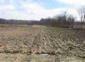 farm field empty