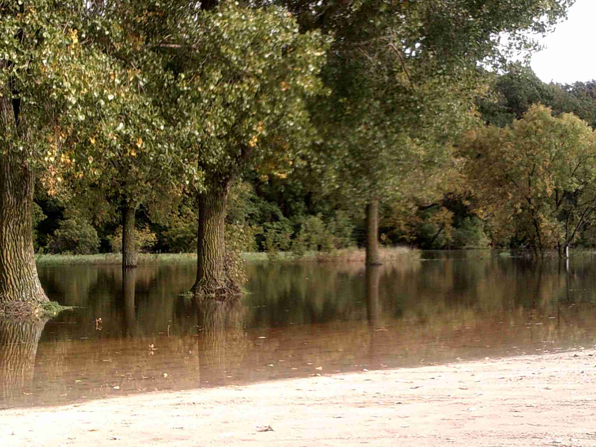 The Winnebago River is out of its banks in some locations due to the heavy rains.